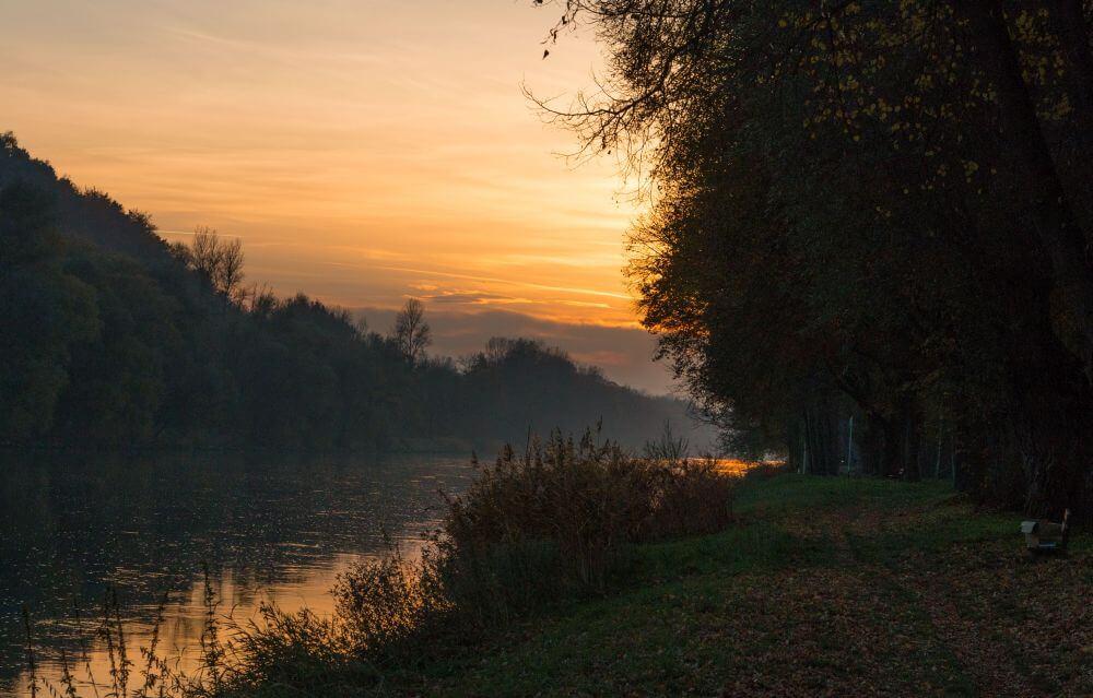 Kamera: Foto eines Auwaldes bei Sonnenuntergang